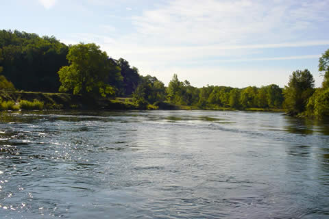 Manistee River Fishing Guides