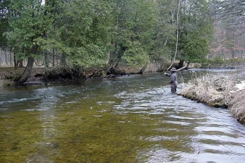Pere marquette river fly fishing j j river guides inc for Pere marquette river fishing report