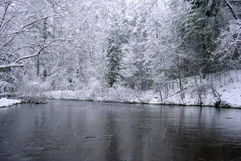 Winter on the Pere Marquette River